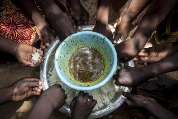 ООН запасається їжею через імовірний голод у світі внаслідок пандемії  фото, ілюстрація