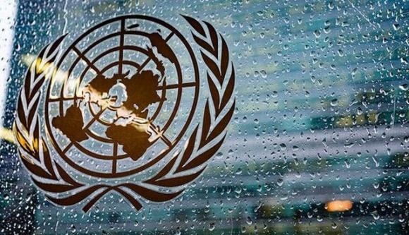 Украина вошла в Комитет продовольственной безопасности ООН фото, иллюстрация