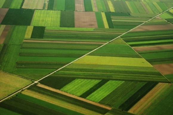 Аферисти за безцінь скуповують в українців землю: як працює схема фото, ілюстрація