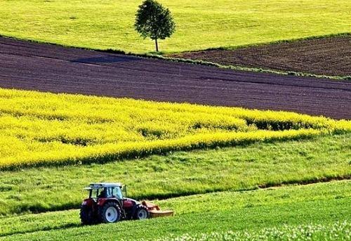 Вартість оренди гектара землі зросте у два рази після введення ринку, - програма уряду фото, ілюстрація