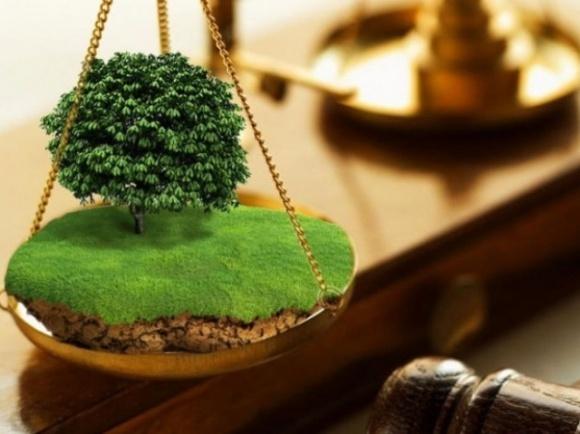Зеленский подписал закон о внесении изменений в Земельный кодекс Украины фото, иллюстрация