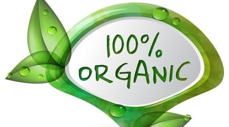 Украина в 10-ке мировых производителей органических зерновых и масличных фото, иллюстрация