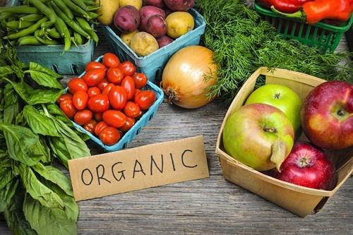 «Органічне землеробство забезпечує майже дворазову економію на інвестиціях», — директор господарства фото, ілюстрація