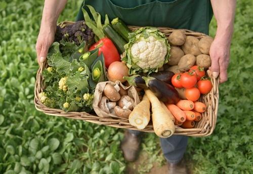 70% українських виробників органічної продукції мають труднощі з її збутом фото, ілюстрація