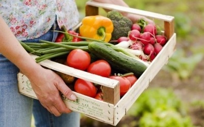 1% всех угодий Украины - под органическим земледелием фото, иллюстрация