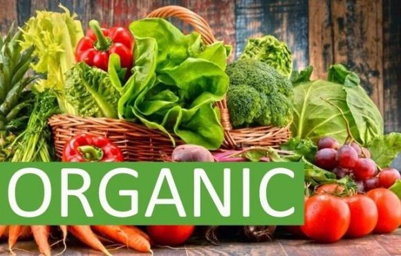 Правительство одобрило постановление о введении в Украине собственной системы сертификации органической продукции фото, иллюстрация