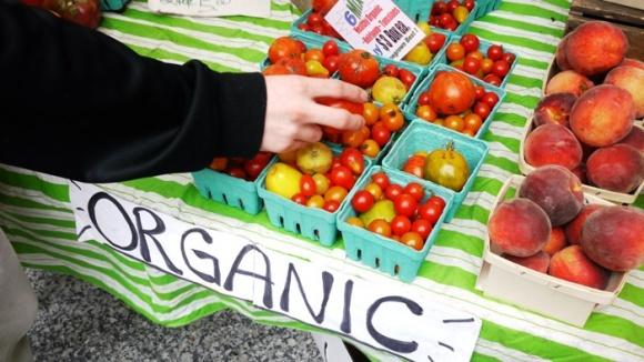 Міністерство допоможе еко-виробникам освоїти ринки ЄС фото, ілюстрація