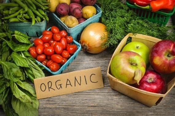Украина наращивает экспорт органической продукции на западные рынки фото, иллюстрация