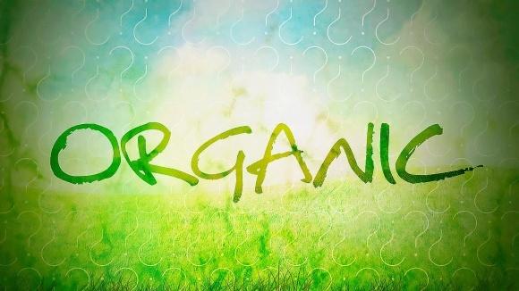 """Чотири аргументи зайнятися органічним землеробством від """"Жива нива"""" фото, ілюстрація"""