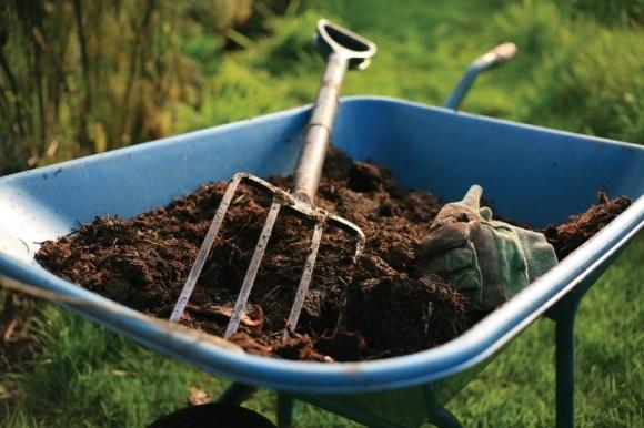 «Гібридне» органічне виробництво стане вигідним фото, ілюстрація