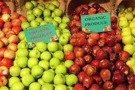 До списку найбільших імпортерів органічної продукції з України входять лише розвинуті країни фото, ілюстрація