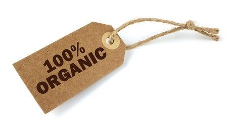На Полтавщине будут компенсировать 100% стоимости органической сертификации фото, иллюстрация