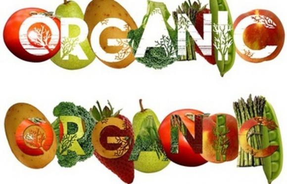Три типа покупателей органической продукции фото, иллюстрация