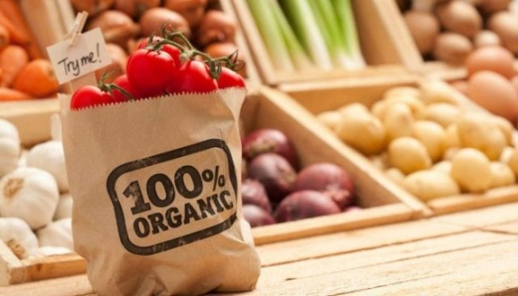 В Украине создадут Национальный каталог экспортеров пищевой органической продукции фото, иллюстрация