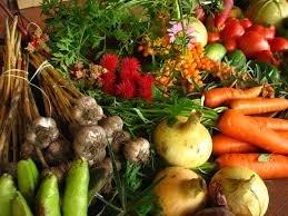 В Украине заработает реестр производителей органической продукции фото, иллюстрация
