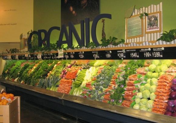 Херсонщина стала важной точкой на карте по снабжению органической продукции в ЕС фото, иллюстрация