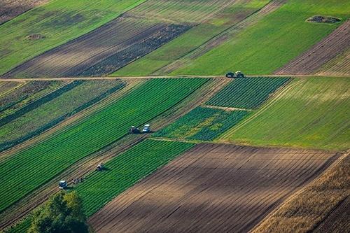 С 1 января вступил в силу закон о коллективной собственности на землю фото, иллюстрация