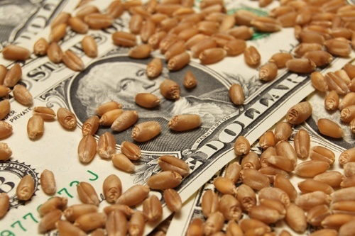 «Укрзализныця» не поддержала предложенный УЗА проект Меморандума о взаимопонимании между участниками зернового рынка фото, иллюстрация