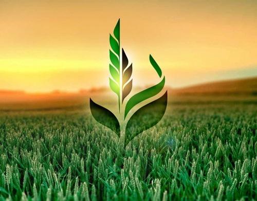"""Ліквідація ВАТ """"Аграрний фонд"""" - це додаткові 5 млрд гривень видатків для бюджету, - заява фермерів фото, ілюстрація"""