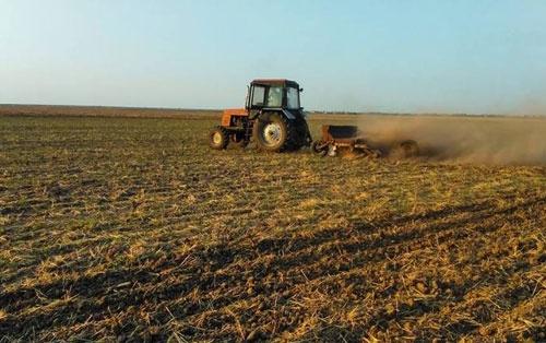 Запрет на продажу земель иностранцам был согласован с Зеленским, - нардеп от СН Сольский фото, иллюстрация