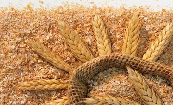 Египет возобновит импорт украинских пшеничных отрубей фото, иллюстрация
