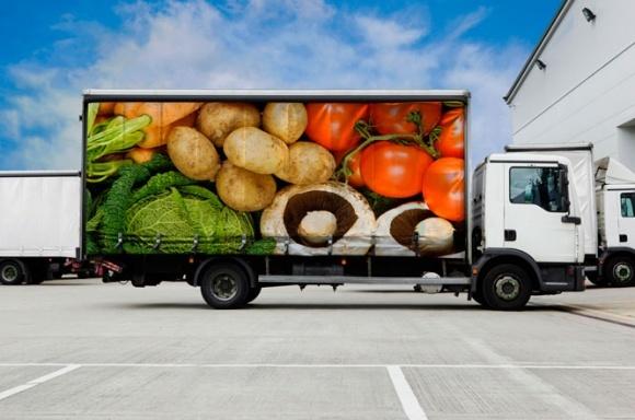 В Запорожской области откроют Упаковочную платформу для тепличных овощей фото, иллюстрация