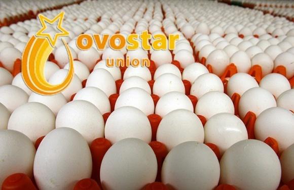 Ovostar Union намерена купить польский птицекомплекс фото, иллюстрация