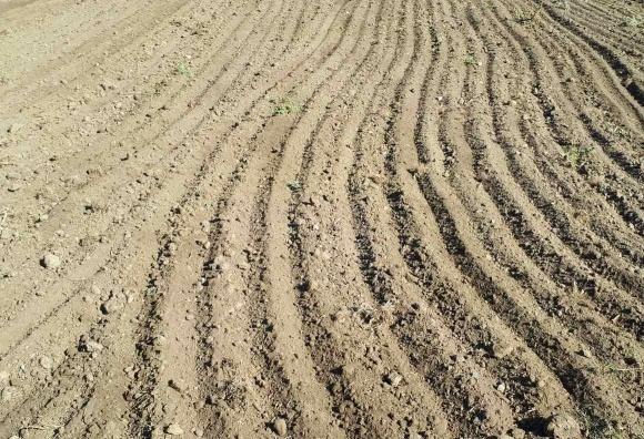 Сев озимых в Херсонской области проходит в неблагоприятных погодных условиях фото, иллюстрация