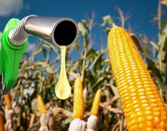 Нардеп Ивченко объяснил, почему в Украине все еще не производят биотопливо несмотря на большой ресурсный потенциал фото, иллюстрация
