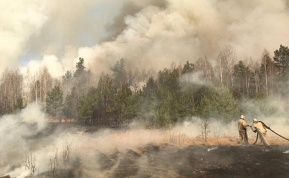 Рада в 18 раз увеличила штрафы для поджигателей сухой травы фото, иллюстрация