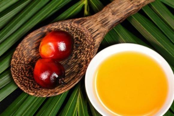 Производство пальмового масла в Малайзии в этом году вырастет на 15% фото, иллюстрация