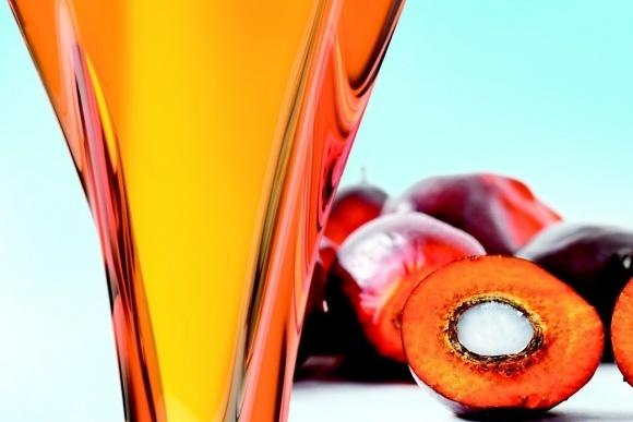 Заборона пальмової олії призведе до збільшення споживання трансжирів, - «Укркондпром» фото, ілюстрація