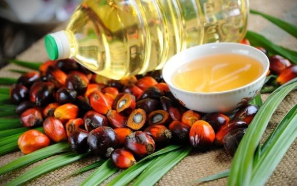 В Малайзии конечные запасы пальмового масла в апреле снизились до минимума  фото, иллюстрация