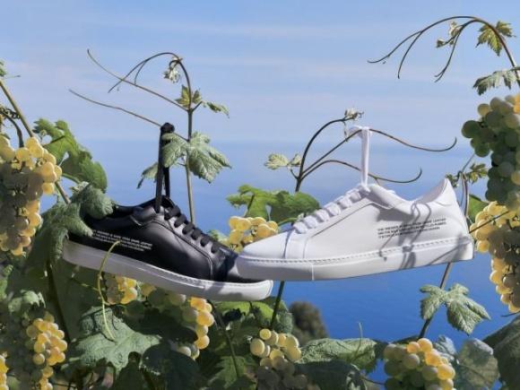 На рынок вышли кроссовки из виноградных отходов фото, иллюстрация