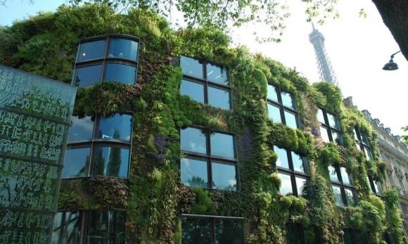 Париж перетворять на екомісто з вертикальними фермами фото, ілюстрація