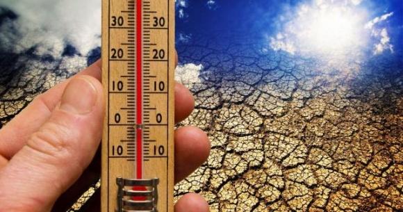 Мораторий на землю мешает внедрению климатически-ориентированных технологий фото, иллюстрация