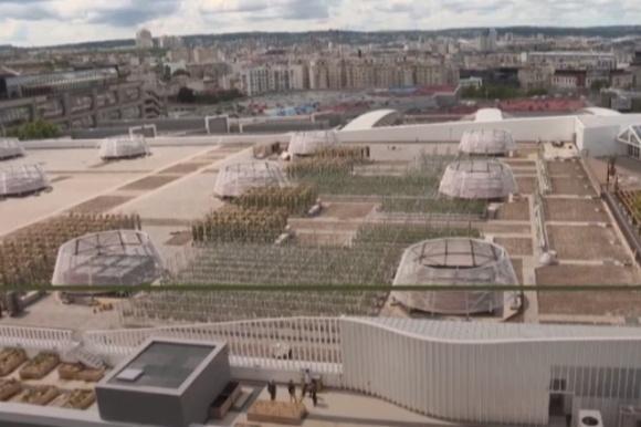 У Парижі відкрили найбільший у світі сад на даху фото, ілюстрація