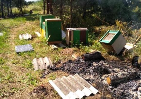 На Тернопольщине нелюди умышленно сожгли пасеку фото, иллюстрация