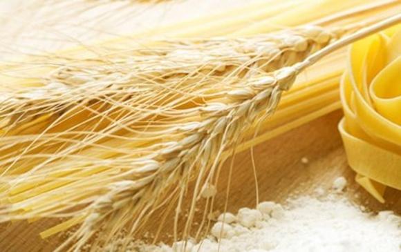Американські селекціонери виявили, що якість «пасти» не залежить від твердості пшениці фото, ілюстрація