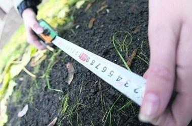 В Запорожской области крестьянам вернут паи с помощью силовиков фото, ілюстрація