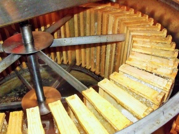 На Хмельнитчине создадут школу пчеловодства для воинов АТО фото, иллюстрация