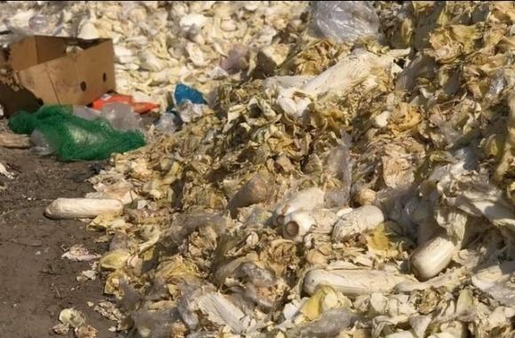В Великих Копанях тонны овощей выбросили из-за закрытия рынков фото, иллюстрация
