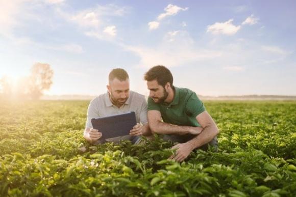 PepsiCo объявляет цель: к 2030 году расширить масштабы практик устойчивого земледелия почти 3 млн гектаров  фото, иллюстрация