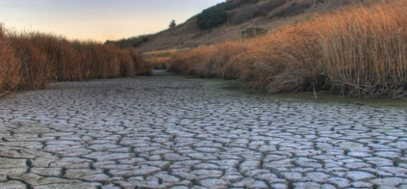 Всесвітній фонд природи б'є тривогу: в Україні все менше прісноводних ресурсів фото, ілюстрація