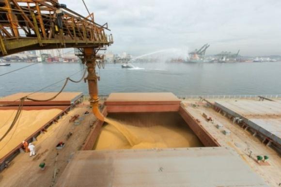 Достигнув исторического максимума, цены на пшеницу в малых портах Украины резко снизились фото, иллюстрация