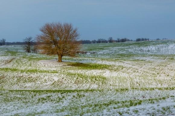 В Украину наконец идет зима? фото, иллюстрация