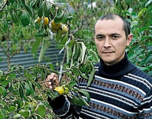 Подільська хурма з Мазурівки і сім тонн персиків із власного саду фото, ілюстрація
