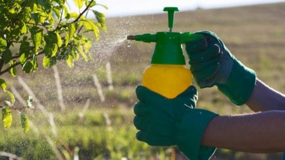 В Європі виявлено рекордну кількість підроблених пестицидів  фото, ілюстрація