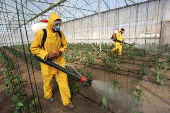Эксперты ООН обвинили производителей пестицидов в искажении информации фото, иллюстрация