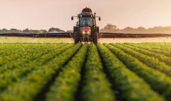 Египет планирует сократить использование пестицидов наполовину к 2030 году фото, иллюстрация